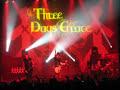 Three Days Grace – Riot