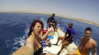 Marsa Alam Egypt  City new picture : Egypt - Marsa Alam - 2016