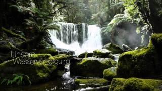 Internationaler Tag der Wälder 2016
