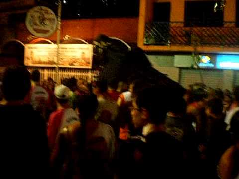 Carnaval de Porto Ferreira. 2010...olha o boi....AVI