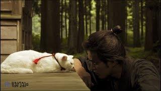 Nonton  Review                                                                            Samurai Cat  Neko Zamurai                                          2014  L Maewmaka                 Film Subtitle Indonesia Streaming Movie Download