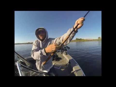 Salmon fishing Columbia River Pasco Wa_Horg�szat vide�k