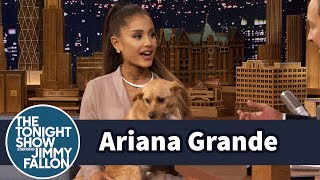 Video Ariana Grande Shows Off Her Winking Dog Toulouse and Sassy Nonna MP3, 3GP, MP4, WEBM, AVI, FLV April 2018