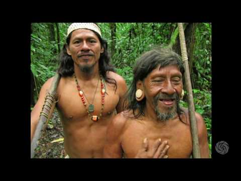Mark Plotkin: Maps, Magic and Medicine in the Rainforest | Bioneers 2016
