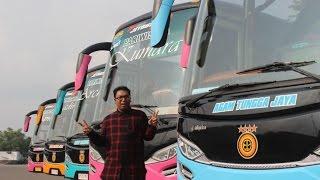 Agam Indonesia  City new picture : Review Agam Tungga Jaya Luxury Bus (ELKUSLA)