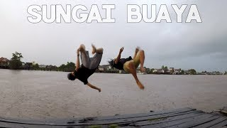 Video Berenang Bersama Buaya - Pangkalanbun (Kalimantan #1) MP3, 3GP, MP4, WEBM, AVI, FLV Juli 2019