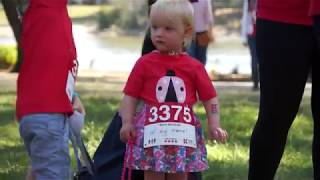 Brisbane Big Red Kidney Walk 2017