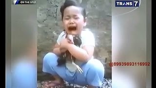 Video On The Spot - 7 Aksi Drama Ditinggal Hewan MP3, 3GP, MP4, WEBM, AVI, FLV Oktober 2017