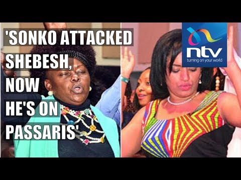 Millie Odhiambo fiercely defends Esther Passaris, Mwende, Shebesh in Parliament