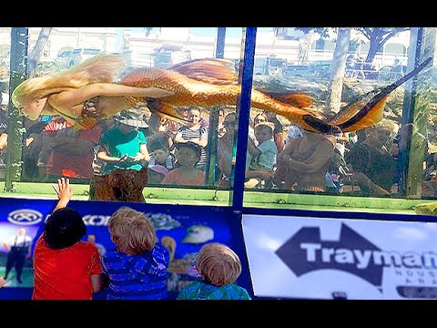 Mermaid Melissa In A Giant Fish Tank Aquarium_Akvárium. Legeslegjobbak