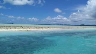 Palau German Channel diving spot