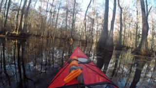 Ville Platte (LA) United States  city pictures gallery : Kayaking at Chicot State Park, Ville Platte, Louisiana