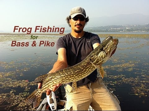 Battuta di pesca sportiva sul lago di Varese