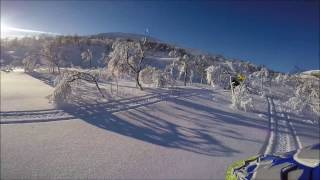 8. Ski doo Summit 850 154'' and 165'' in action