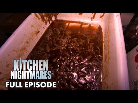 Shepherd's Pie  Makes Gordon THROW UP | Kitchen Nightmares Full Episode