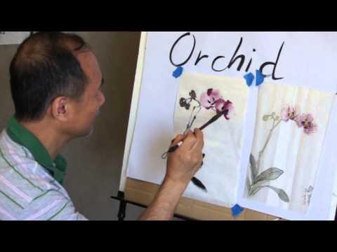 comment traiter orchidée