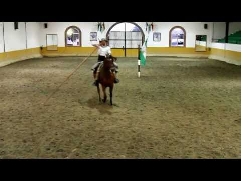 Magistral demostración de doma vaquera con garrocha por José González Video