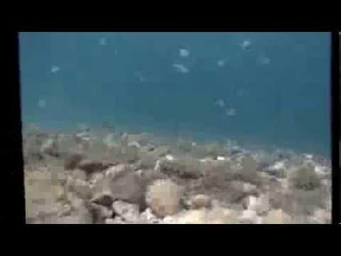 Try Scuba @ Poseidonia Dive Center/ Corfu Isl.