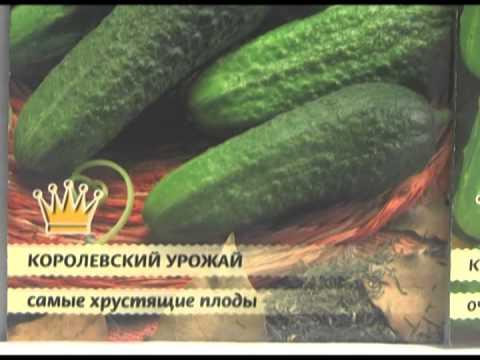 Дачные советы 13.02.2014 (видео)