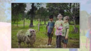 Imbil Australia  city photo : Brooloo Park Camping & Farmstay, Imbil QLD // Nov 2015