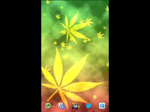 Video of Ganja GL Live Wallpaper