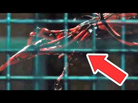 LEAKED CARNAGE FIRST LOOK! Venom 2 Trailer Update