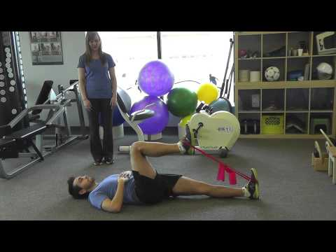 Hip Flexion and Extension