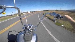 5. 2007 Harley Davidson Dyna Street Bob