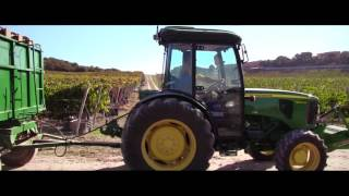 Flip-flop Media - Vídeo corporativo Hacienda Monasterio