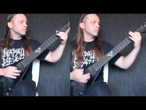 Behemoth - Ov Fire and the Void (Guitar Cover)