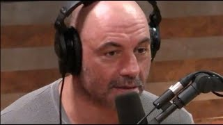 Joe Rogan on the South Africa Farm Controversy