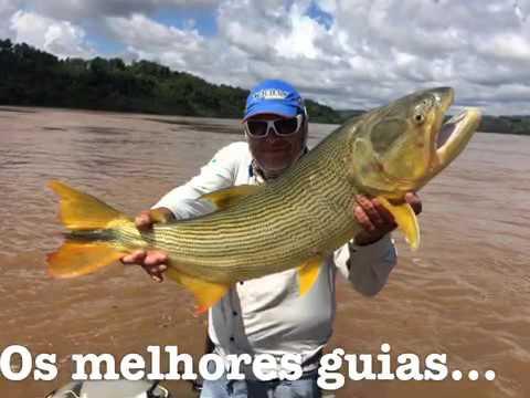 Pesca Esportiva de Dourado em Foz do Igua�u