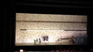 Turco in Italia di G.Rossini - Duetto Fiorilla Don Geronio