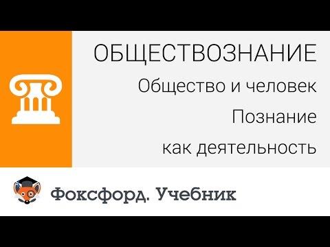 Обществознание. Общество и человек: Познание как деятельность. Центр онлайн-обучения «Фоксфорд» (видео)