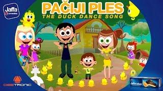 Video Pacji ples / Duck Dance Song (2016) by Deetronic powered by Jaffa MP3, 3GP, MP4, WEBM, AVI, FLV Juli 2019