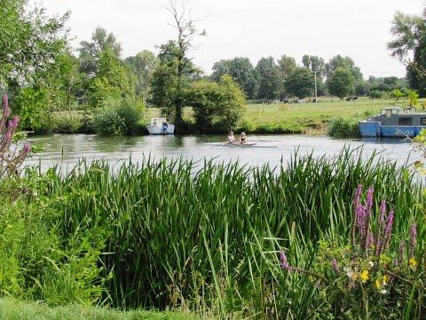 Wallingford   Thames Path   Ridgeway   Swans Way round | oxfordshire  Walks