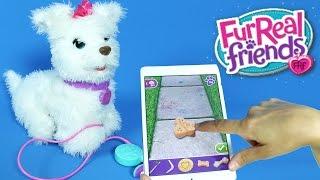 Oyuncak Köpek Fur Real Friends Yeni Cici Köpeğim GOGO Oyuncak ve Uygulaması muhteşem | EvcilikTV