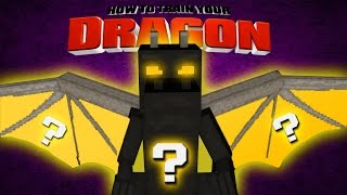 Minecraft - HOW TO TRAIN YOUR DRAGON - Toothless Vs Lucky Block Dragon!? [37]