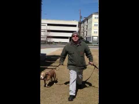 Old Fourth Ward Skate Park Dog Owner Attacks Mommy