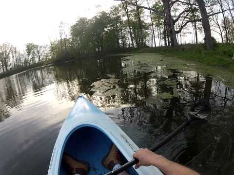 GoPro Pond Fishing, Largemouth Bass