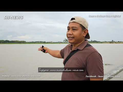 Drainase Tak Berfungsi Optimal, Puluhan Hektar Lahan Pertanian Terendam Air