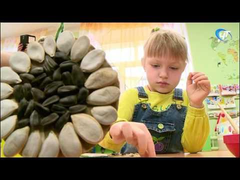В детском саду №7 провели мастер-класс по изготовлению «Эко-кормушек»