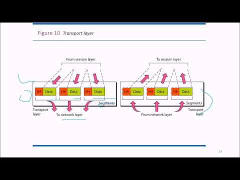 Network Models in Data Communication and Networking ISO OSI TCP IP