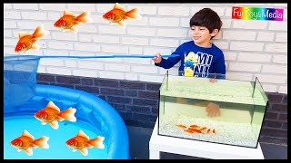 Video Learn Colors with Fishing Nets for Children and Toddlers | Catching Fish Fun Kids Playing Activity MP3, 3GP, MP4, WEBM, AVI, FLV Juni 2017