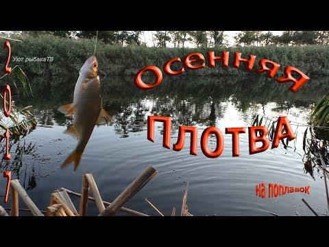 рыбалка осенью секреты