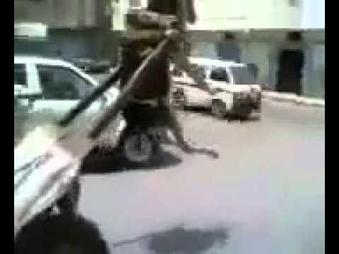 【影片】請不要笑!驢子被貨物帶起來
