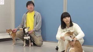 ダベリPART3愛されご主人王は渋川清彦!ドラマ『柴公園』Web限定SP特番