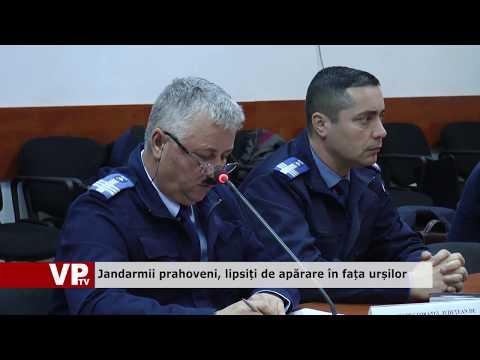 Jandarmii prahoveni, lipsiți de apărare în fața urșilor