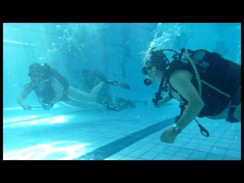 Les éducatifs ludiques pour apprendre la plongée