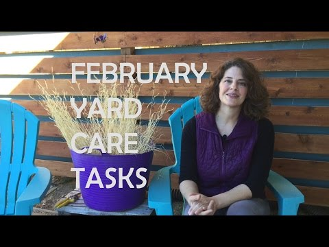 February Yard Care Tasks